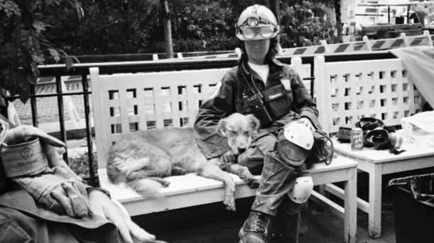 Today We Remember the Heroic Dogs Of The 9/11 Terror Attack
