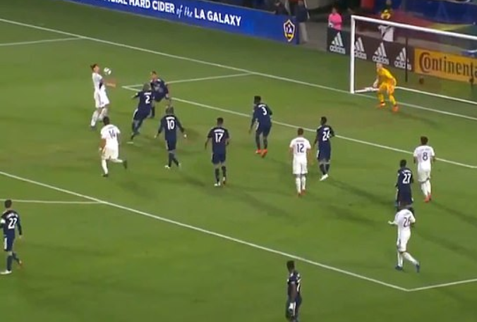 Zlatan Ibrahimovic scores stunner in LA Galaxy loss
