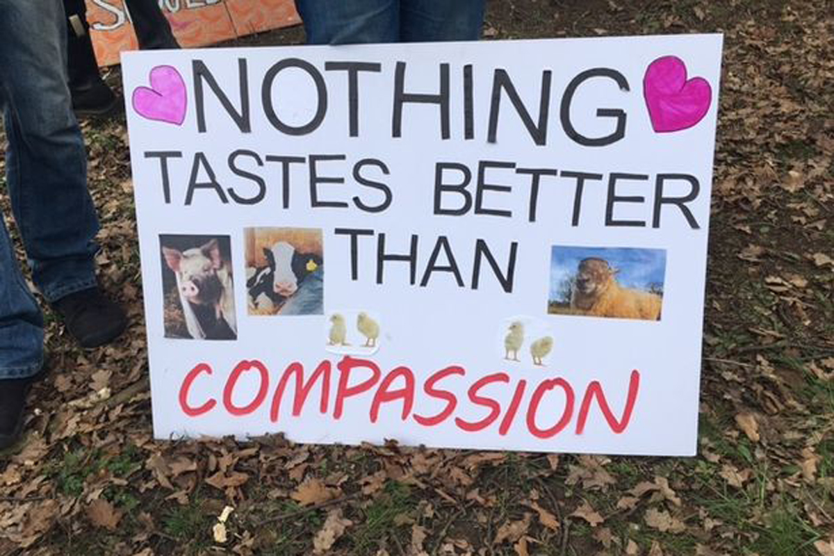 The farm's owner has accused protesters of killing two pigs.  Credit: Lincolnshire Live/Reach