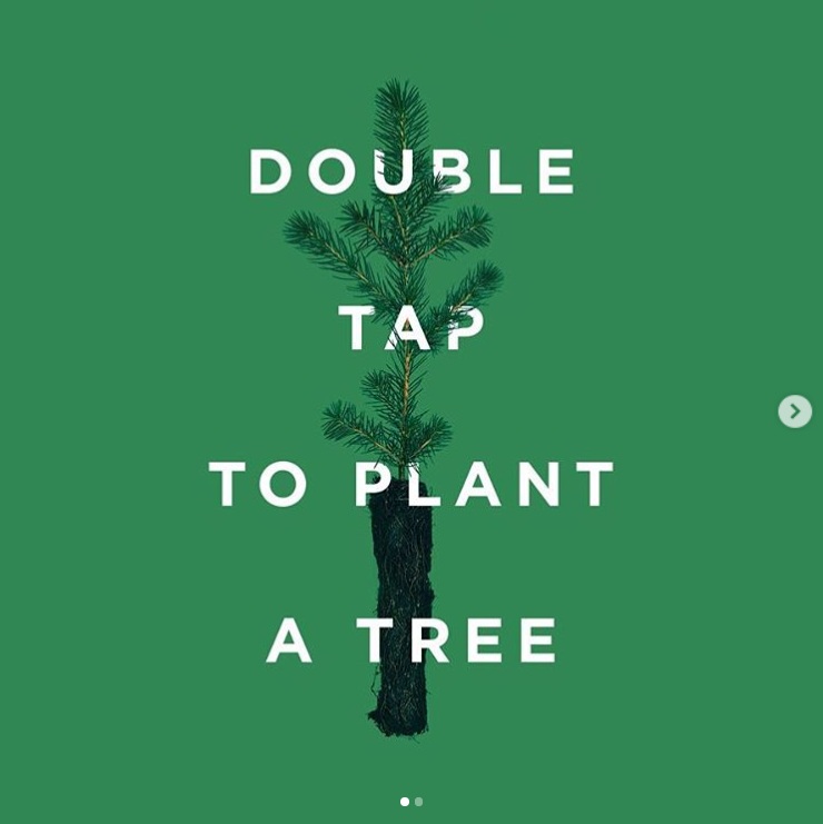 The tentree tree is now the fourth most liked Instagram picture ever.  Credit: Instagram