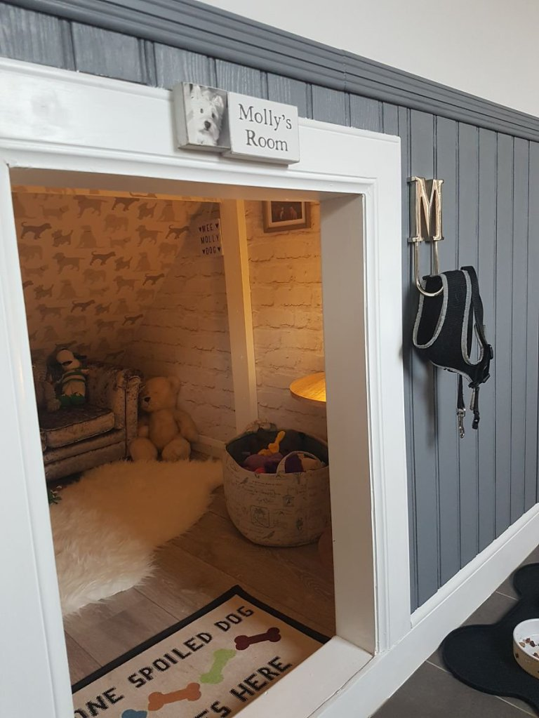 Guy Converts Cupboard Under The Stairs Into Diy Luxury Dog