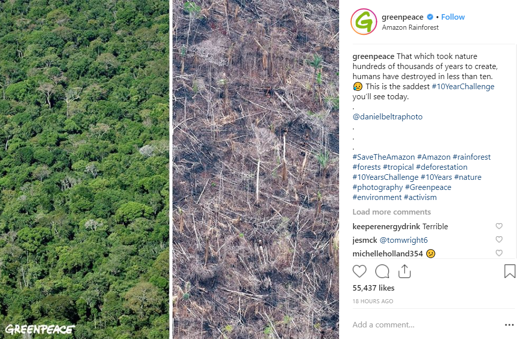 Conservationist groups are using the #10YearChallenge to inform people about the dangers of global warming. Credit: Instagram