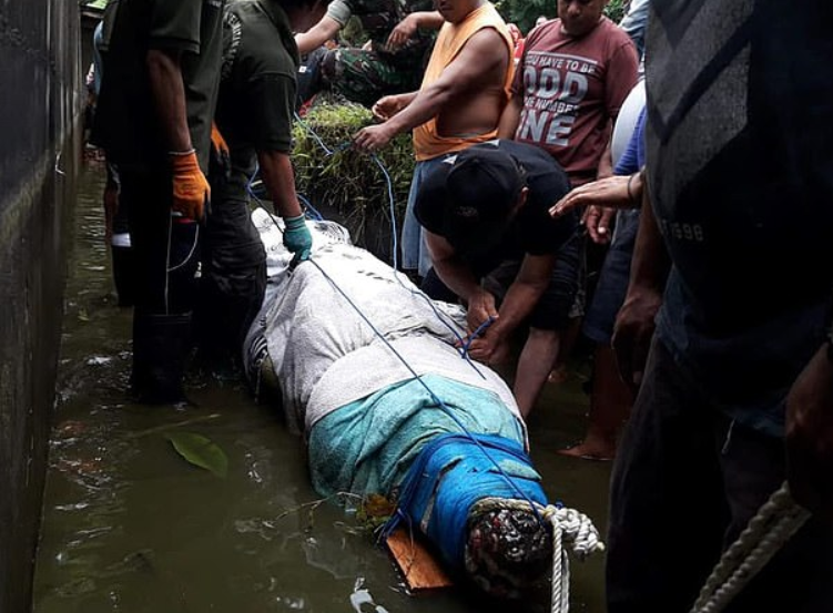 Indonesian Scientists Killed by Giant 17-Foot-Long Crocodile