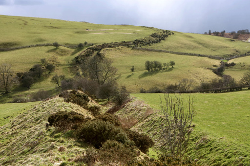 Offa's Dyke, where the Buttington Oak was located. Credit: PA