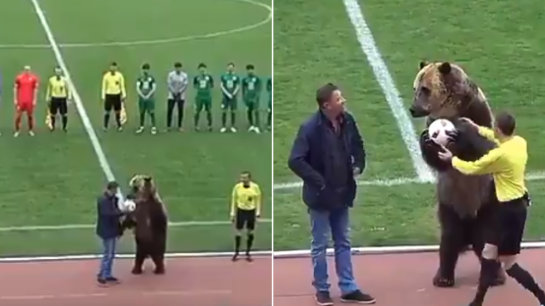 Bear Hands Over The Ball In Russian Third Division Game