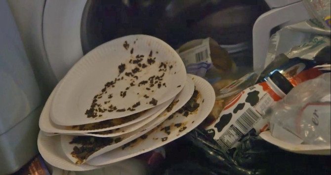 Maggots on paper plates. Credit: Channel 5