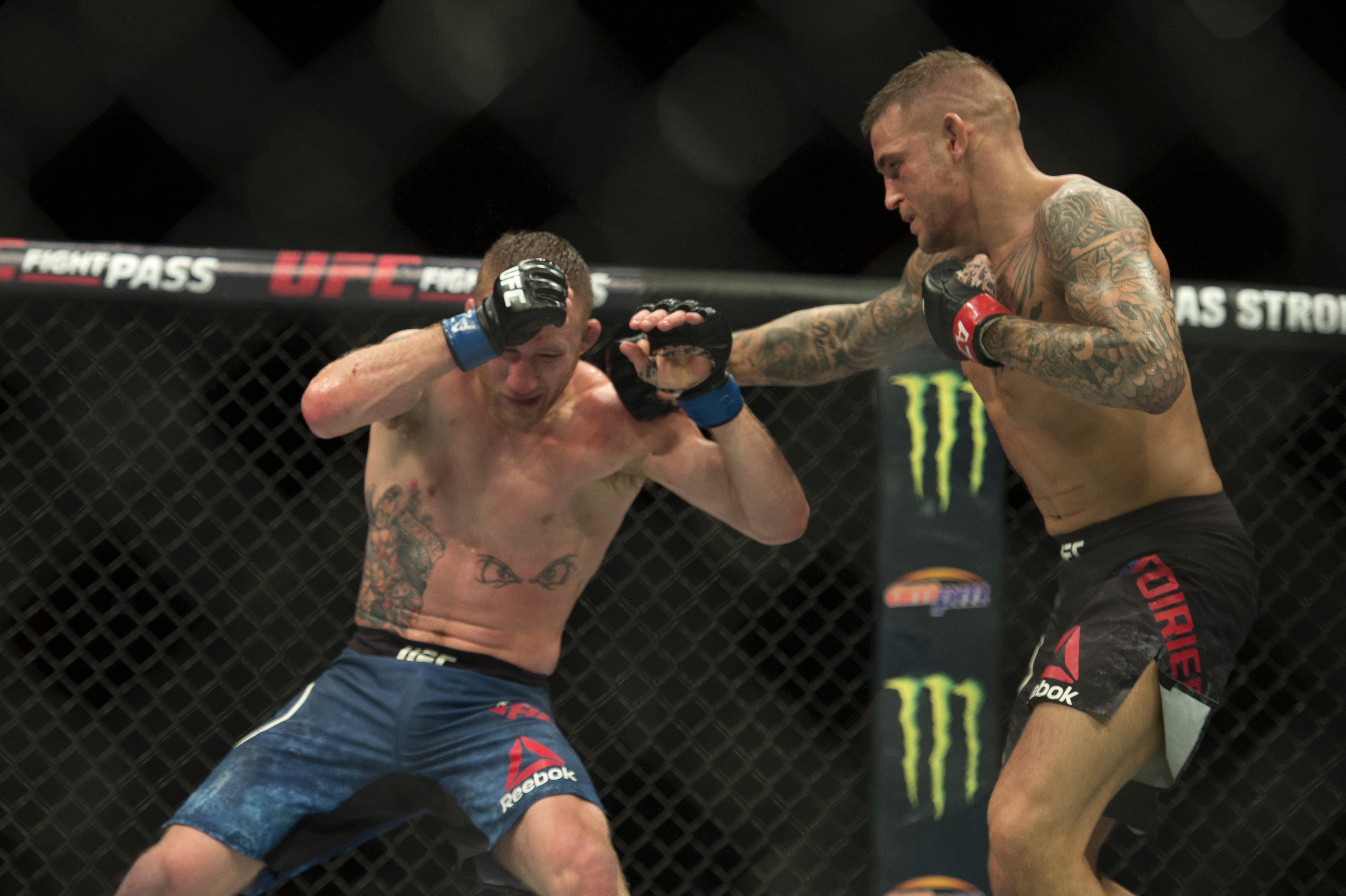 Poirier could be McGregor's next opponent. Image: PA Images
