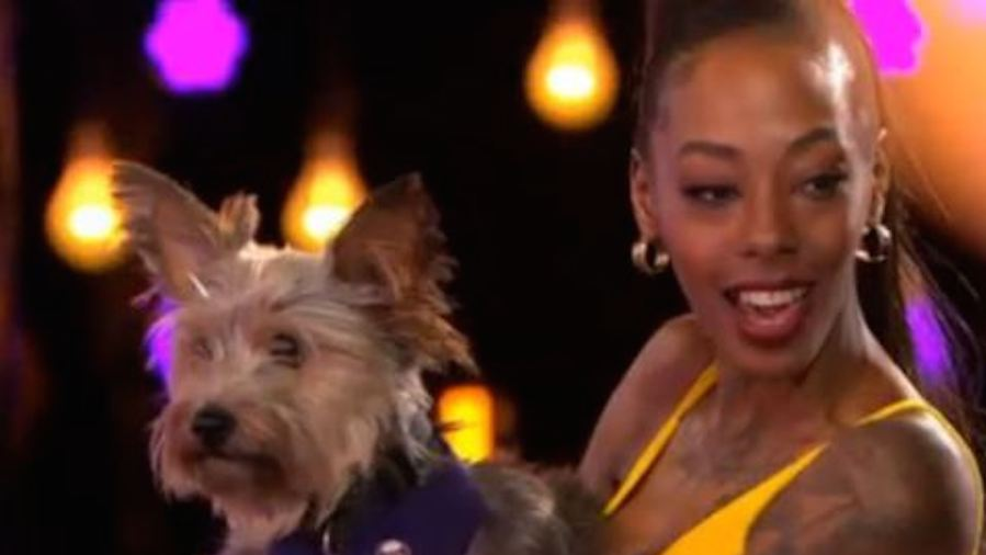 Naked Appeal Contestant Brings Dog To 'Sniff Out' Ability Date thumbnail