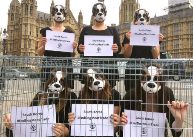 Anti Dog Meat Campaigners Outside Parliament. Credit: PA