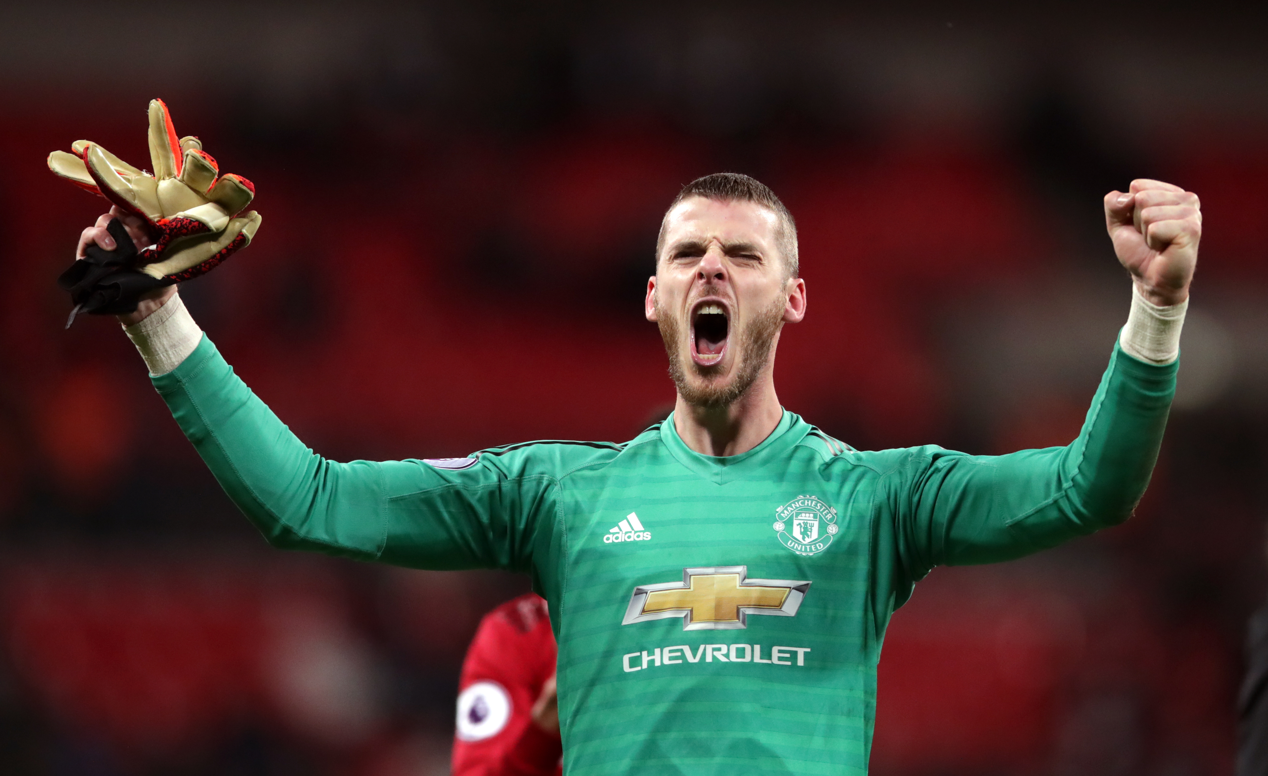 De Gea put in an incredible performance against Spurs. Image: PA Images
