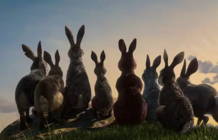 People Are Still Traumatised By Watership Down. Credit: BBC