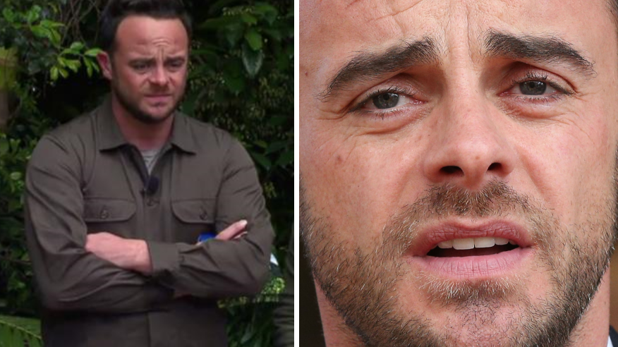 Ant McPartlin Won't Be Returning To I'm A Celebrity 2018
