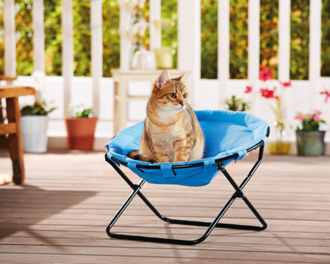 Lidl Is Selling Sun Loungers For Cats And Dogs This Summer