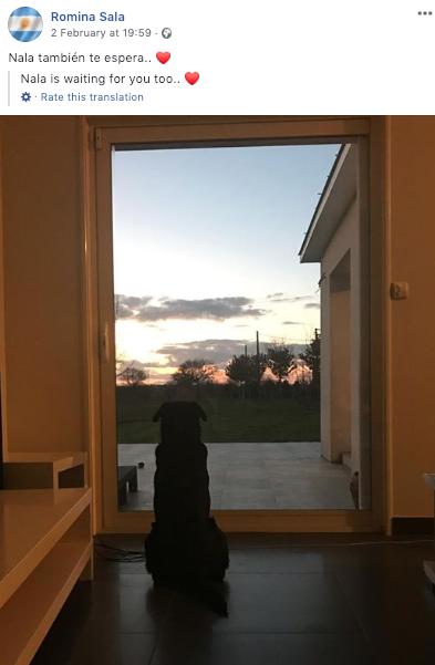 Emiliano Sala's sister, Romina, shared a photo of his dog, Nala. Credit: Romina Sala/Facebook