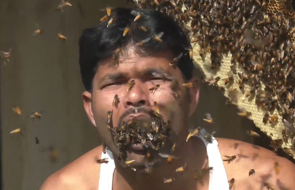 Suk shoves bees in his mouth for no apparent reason. Credit: Newsflare