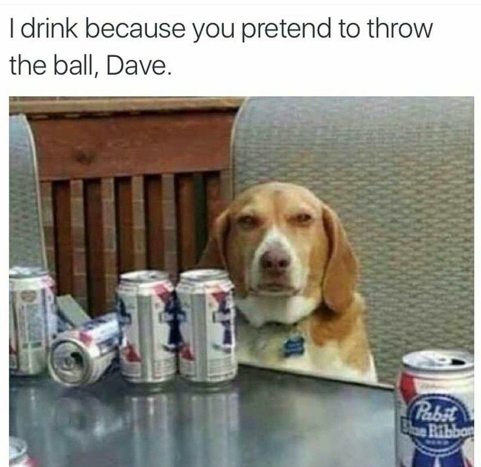 Way to go Dave.