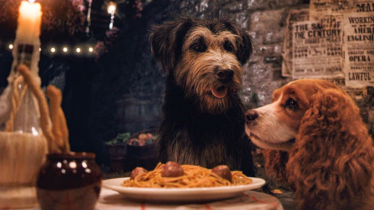 The Siamese Cats Could Be Dropped From The Lady And The Tramp Remake Tyla