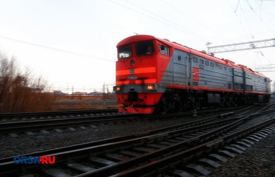 The driver of the train was unable to stop in time to avoid hitting Karina. Credit: east2west news