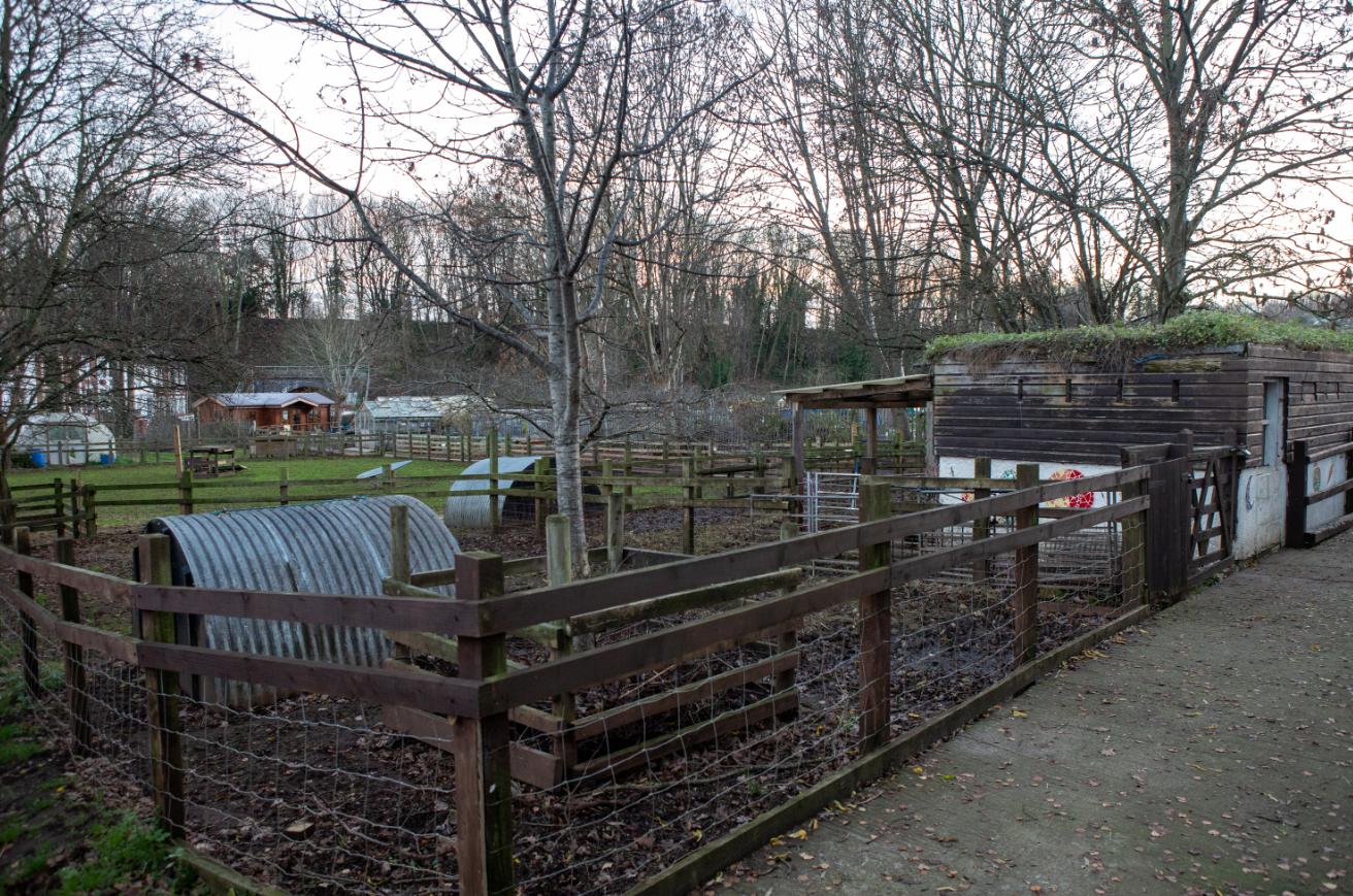 St Werburgh's City Farm in Bristol. Credit: SWNS