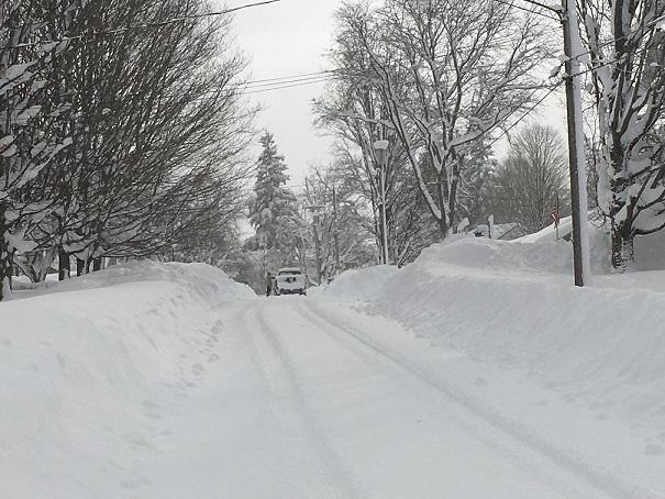 Cassadega in the snow