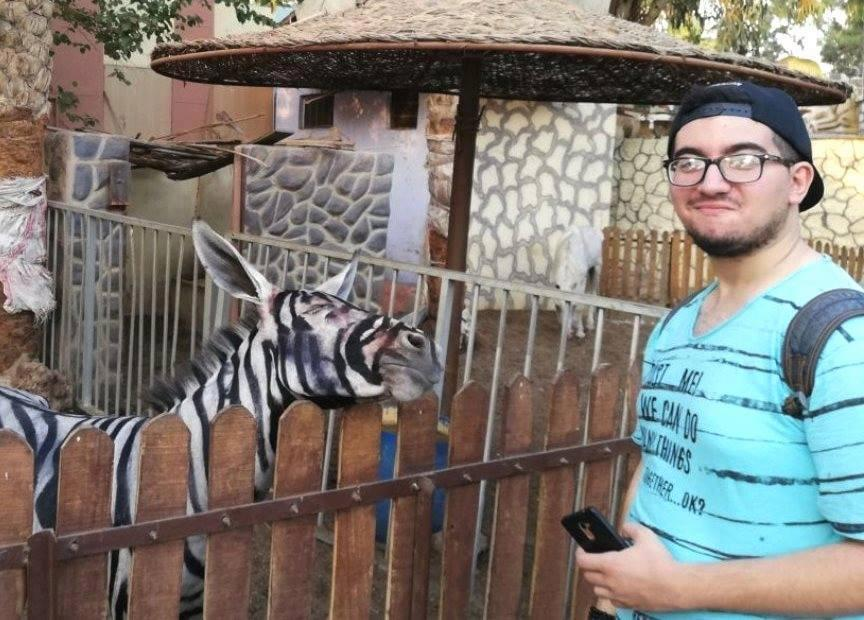 Egyptian Zoo Accused of Disguising Donkey as Zebra