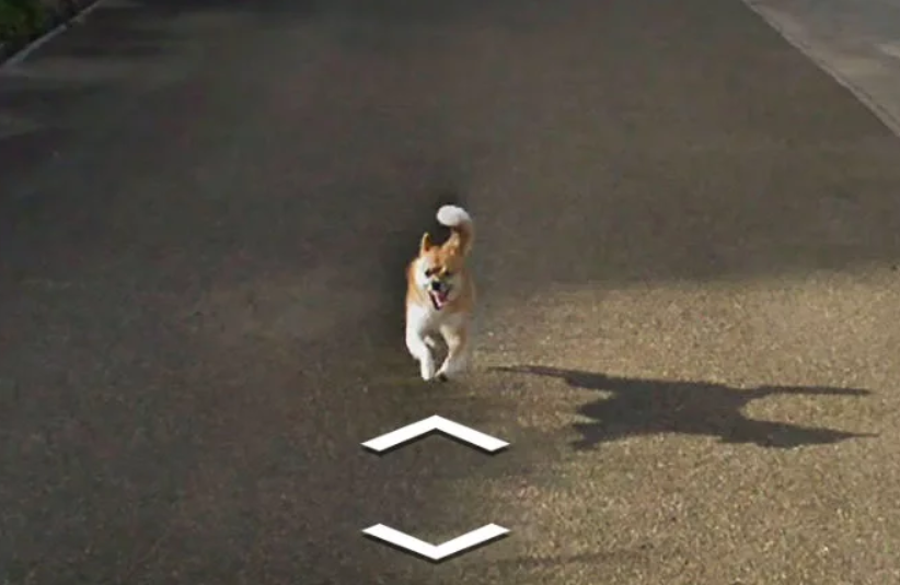 The images on Google Street View for all of us to enjoy. Credit: Google