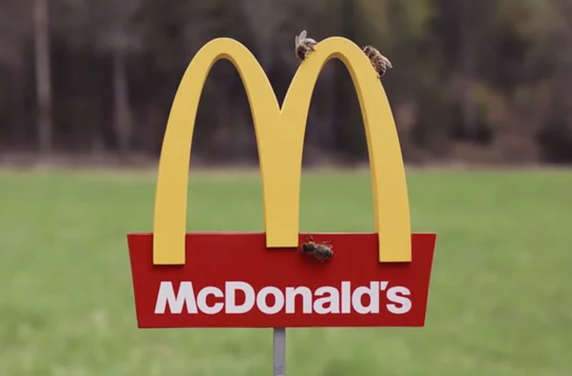 The World's Smallest McDonald's Just Opened & It's for Bees Only