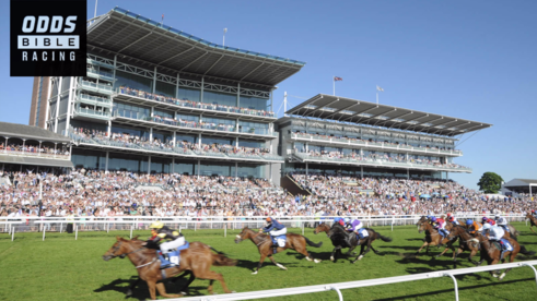 ODDSbibleRacing's Best Bets From Tuesday's Action At Exeter, Southwell and Wetherby | TheODDSBible
