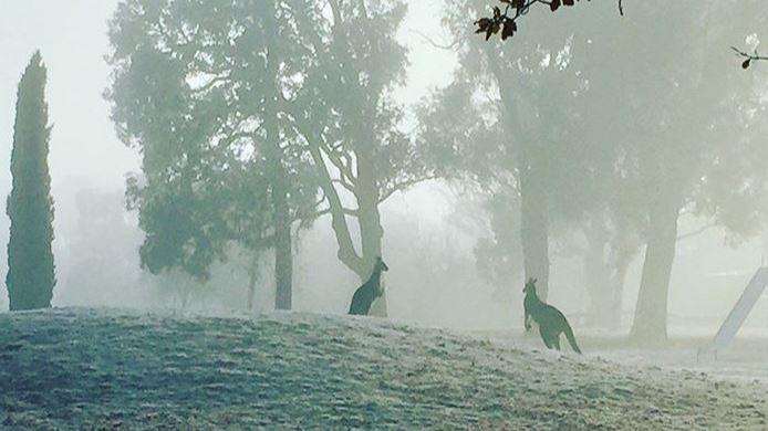 Australia Freezes Through Heavy Rainfall And Worst Temperatures In Ten Years