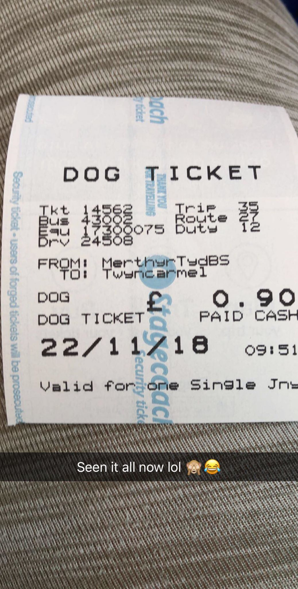 Heidi Lewis couldn't believe it when the bus driver asked her to pay for her dog to get on the bus. Credit: Heidi Lewis