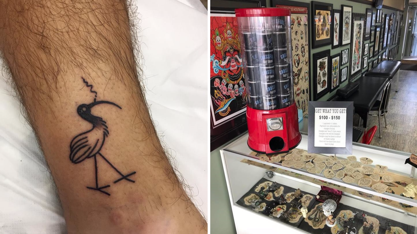 Schoolies On The Gold Coast Have Been Getting Bin Chicken Tattoos And Why Not?