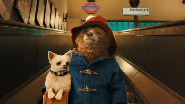 'Paddington 2' Is Now The Highest-Rated Movie In Rotten Tomatoes History
