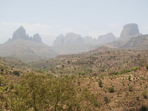 Ethiopia Plants 350 Million Trees in 12 Hours