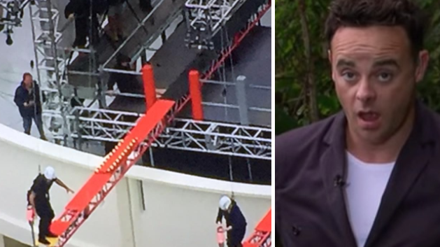 Outrage After 'I'm A Celebrity' Viewer Spots 'Strange Blunder' In Last Night's Episode