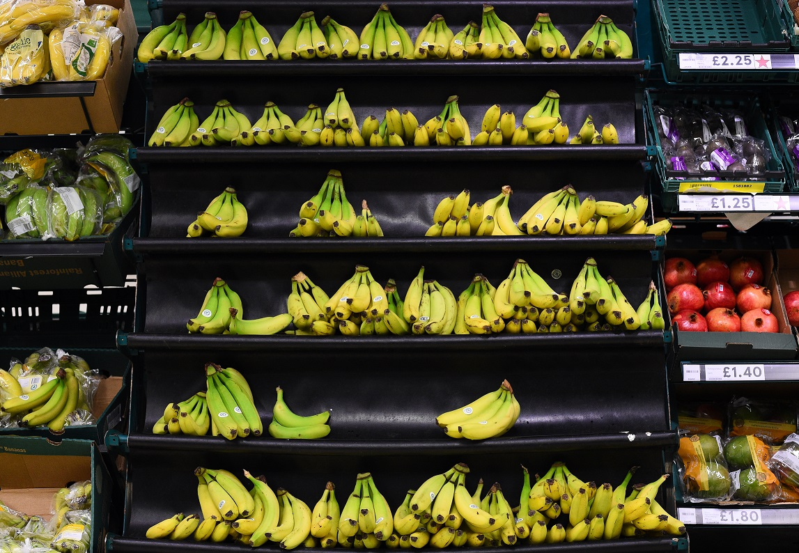 Bye, bye, banana? Scientists trying to save fruit from tropical disease