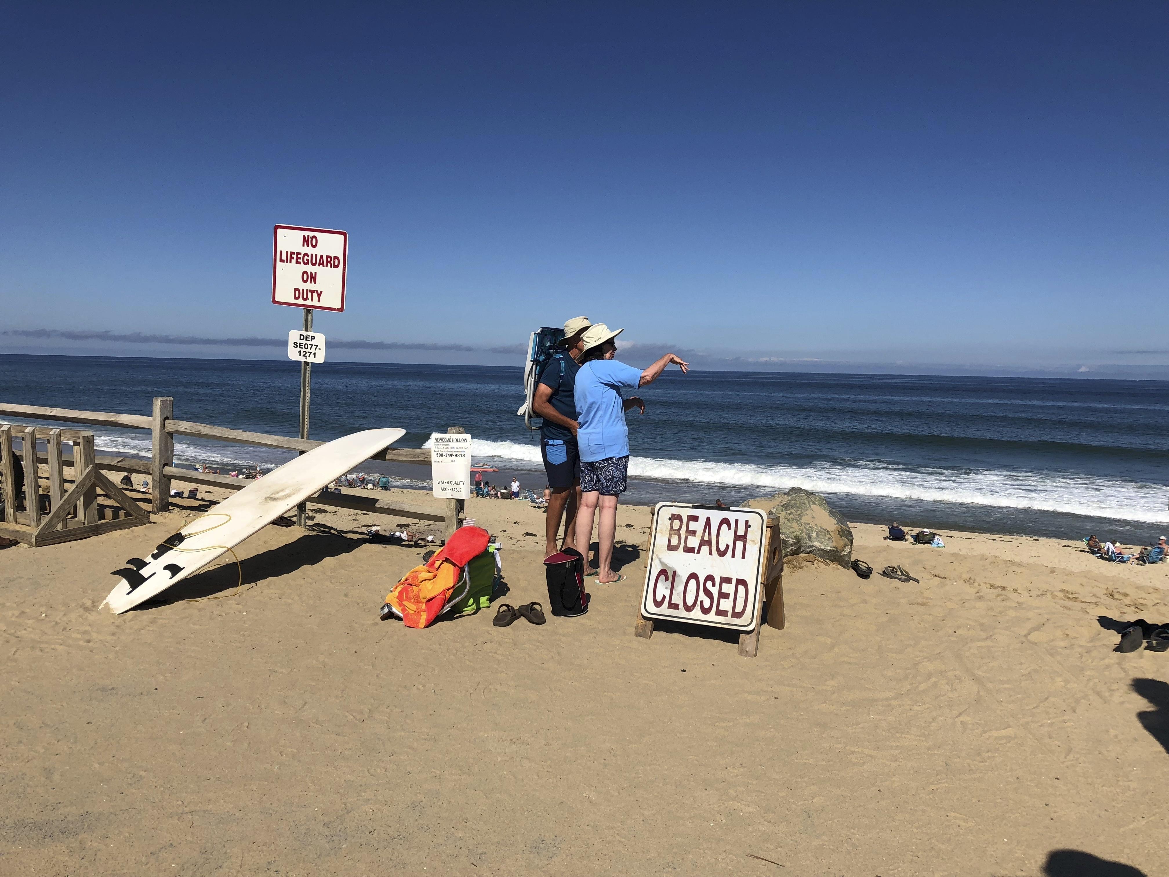 Revere man killed in shark attack at Wellfleet beach