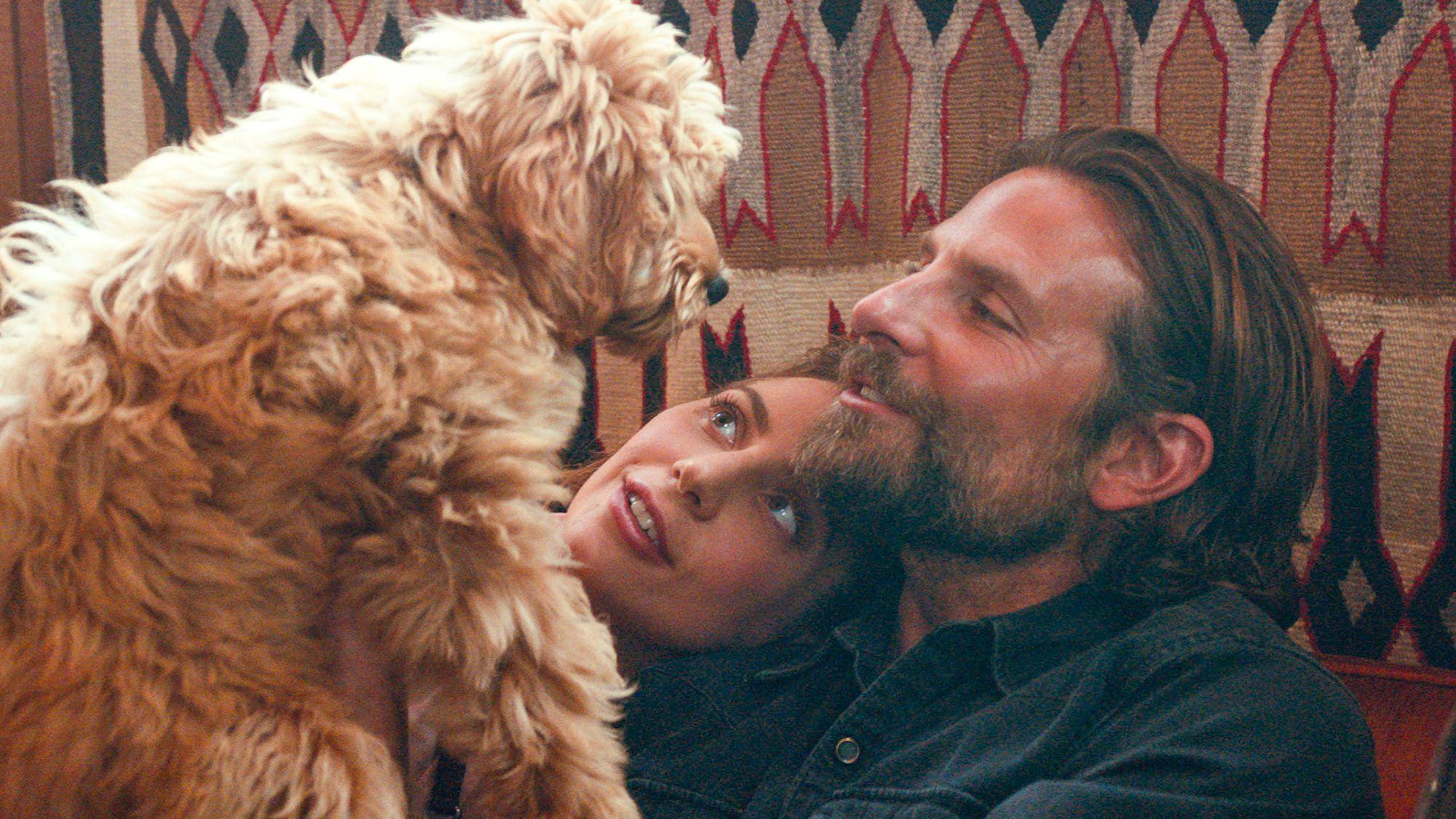 Bradley Cooper, Lady Gaga and Charlie the Dog. Credit: Warner Bros