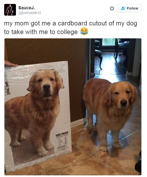 This Mum>