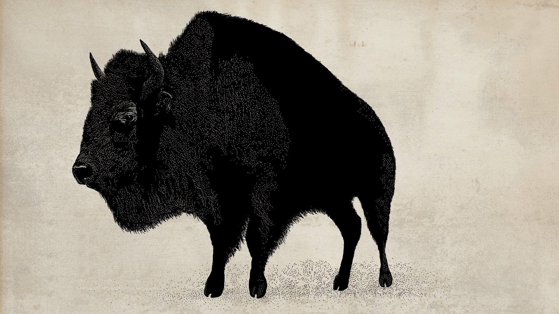 A Red Dead Redemption buffalo / Credit: Rockstar Games