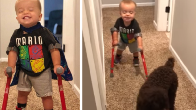 Dog Helps Little Boy With Spina Bifida Walk On Crutches For The First Time