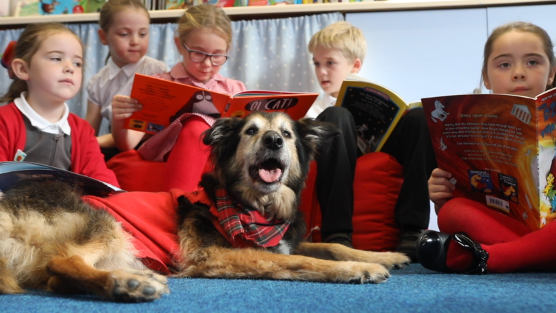 Adorable Dog Helps School Children Learn To Read And Has His Own Uniform