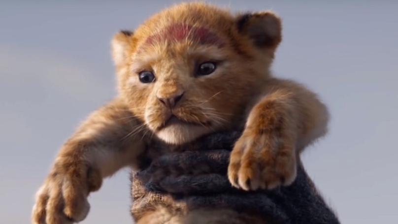 Lion King Cast & Who's Starring Alongside Beyoncé in Disney's 2019 Remake