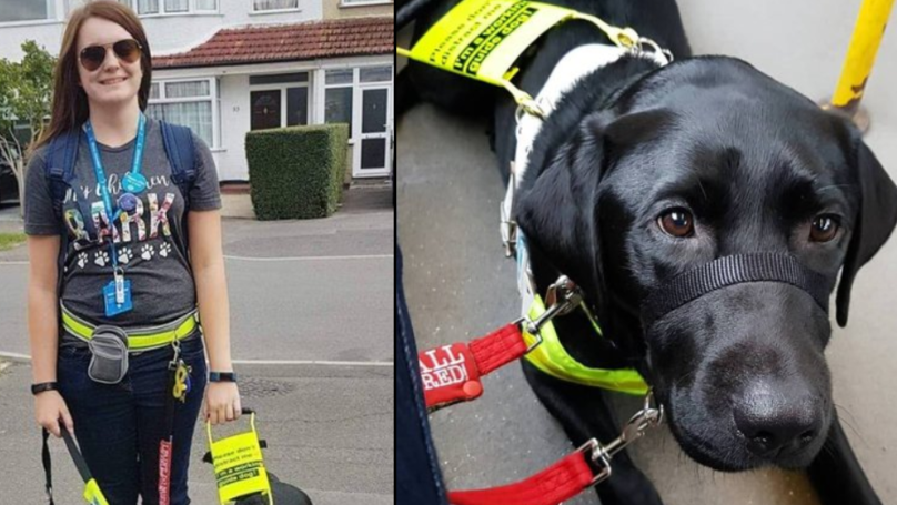 Blind Woman Told To Remove Her Guide Dog From Bus Because It Was Black