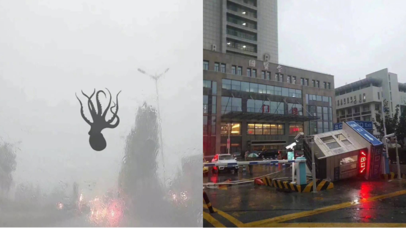 Severe Storm Causes Sea Creatures To Rain From Sky