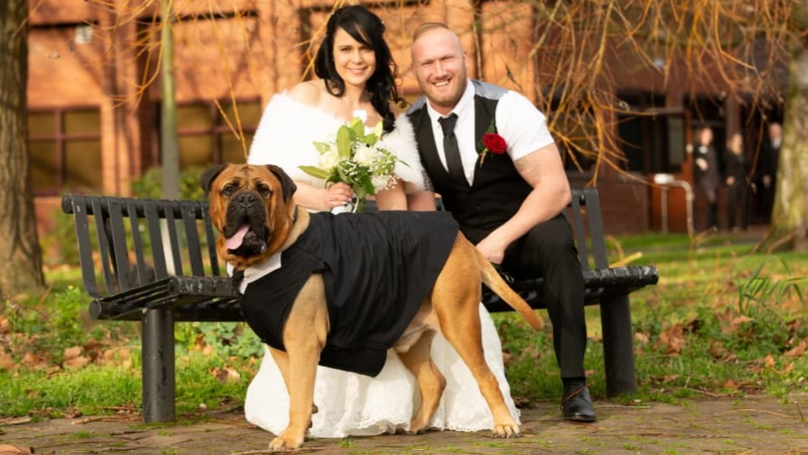 Couple Bring Forward Wedding So Dog Can Attend Following Cancer Diagnosis