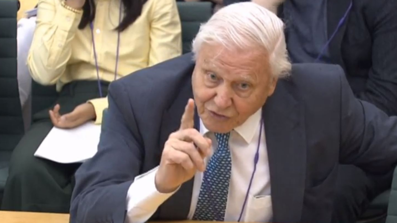 Sir David Attenborough Blasts 'Powerful' Figures In Australia Who Don't Believe In Climate Change