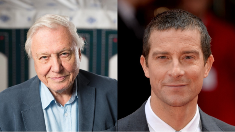 David Attenborough Goes In On Bear Grylls For Killing Animals In TV Show