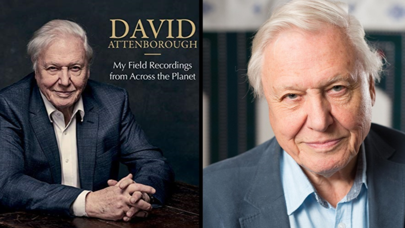 David Attenborough Could Be In The Running For Christmas Number One