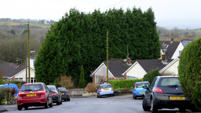 Local Council Orders Woman To Trim Her Bush