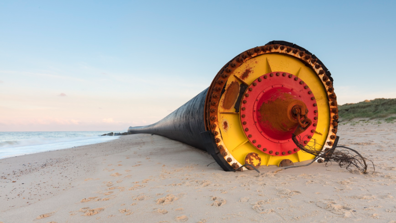People Flock To Norfolk Coastline After Massive Tubes Wash Ashore